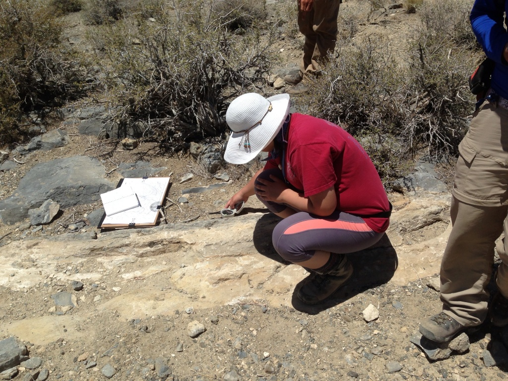 Candice measuring strike and dip in the Little Poleta map area in the White Mountains of Eastern California. Photo by John Goss.